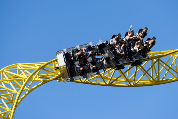 Are Your Profits on a Rollercoaster Ride?